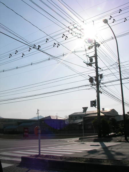 0204電線